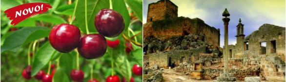 Rota da Cereja e Aldeias Históricas de Portugal