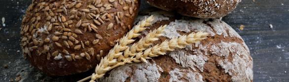 Casqueiro – Festival do Pão, Bolos e Tradições